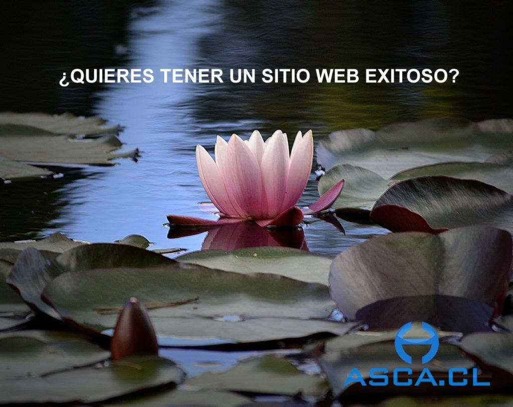 ¿Cómo desarrollar un sitio Web Exitoso en Valdivia?